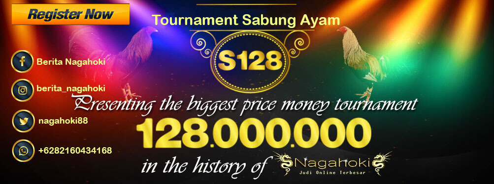 Tournament sabung ayam